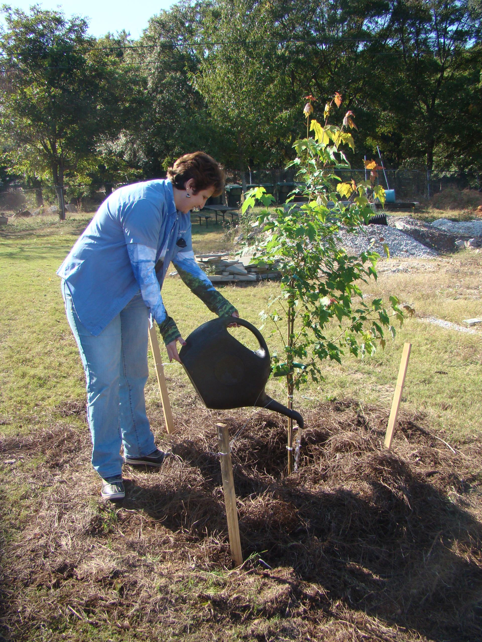 Donna watering tree