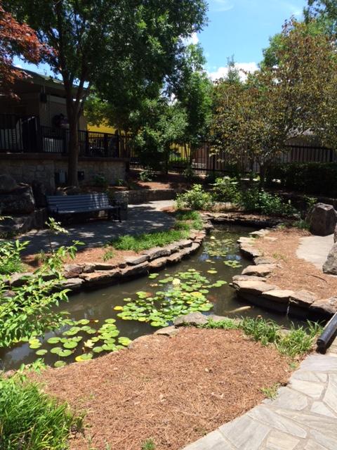 Botanical Garden 2 6.19.15